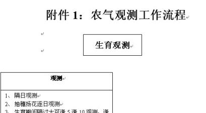 天津大港区气象局农气观测工作流程
